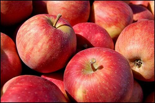 Les pommes contre la fibromyalgie.