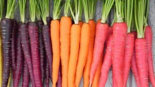 Les carottes soulagent la colite