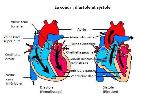 Souffle cardiaque : c'est quoi ?