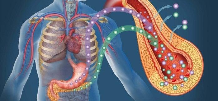 Comment reconnaître et traiter le diabète