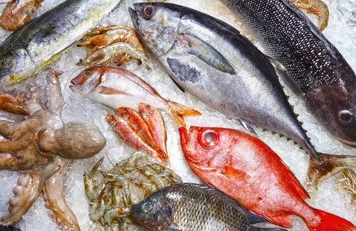 5 poissons que vous devriez éviter