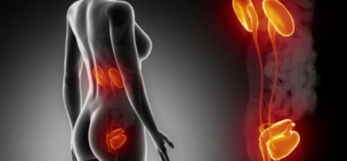 Les dangers de se retenir d'uriner