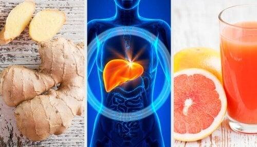 recettes de régime de maladie de foie