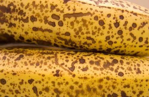 Les propriétés anti-cancérigènes de la banane mûre