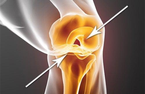 Comment régénérer des cartilages endommagés ?