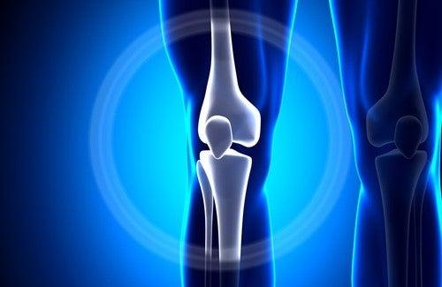 Comment ne pas perdre le calcium dans vos os
