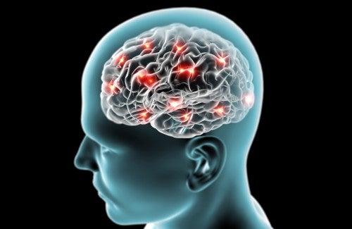 Peut-on prévenir naturellement la maladie d'Alzheimer ?