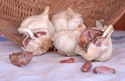 Comment éliminer les verrues avec des remèdes naturels