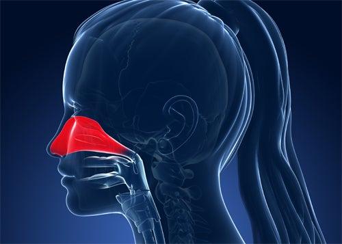 Remèdes naturels contre les allergies nasales : solutions salines