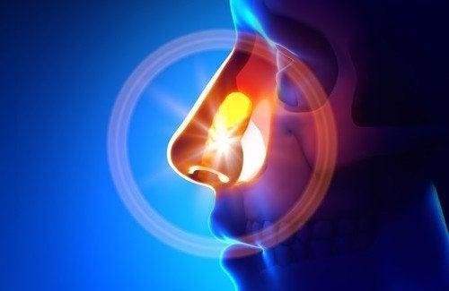 Conseils pour éviter et traiter naturellement la sinusite