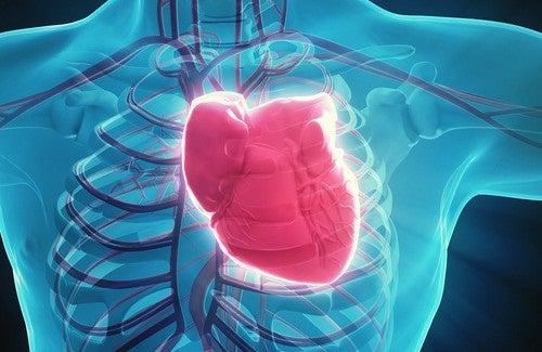 7 habitudes qui endommagent votre cœur