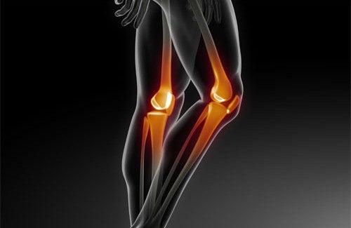 Comment prévenir les maladies des os ?