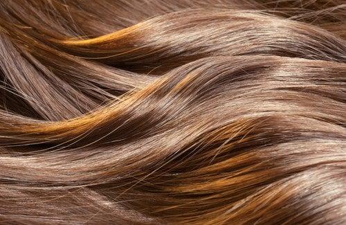 Le fer fait il pousser les cheveux
