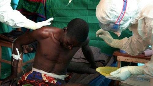 Ce qu'il faut savoir sur le virus Ebola