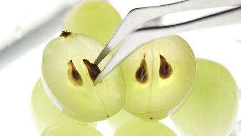 Grains de raisin