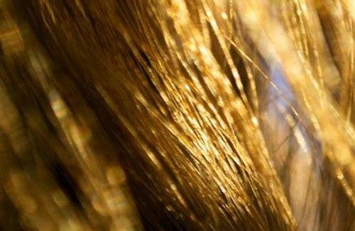 Dites adieu aux cheveux secs de manière naturelle