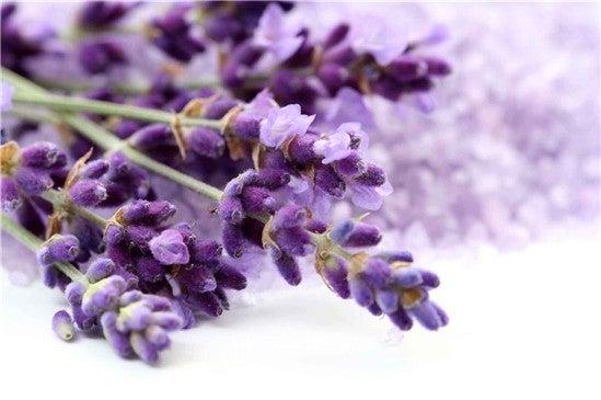 Remèdes contre l'hypertension avec des plantes médicinales