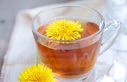 5 plantes médicinales pour vous aider à maigrir