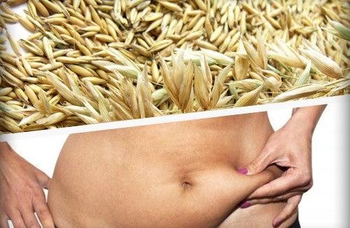 Les 3 meilleures céréales pour perdre du poids