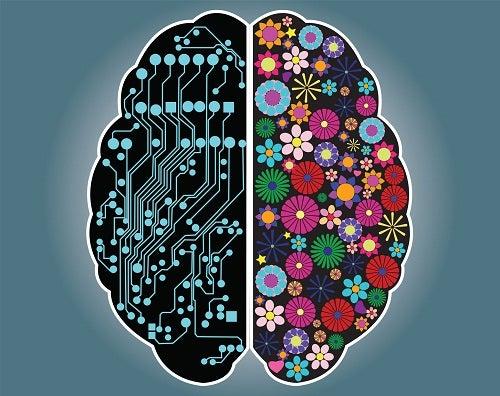 Êtes-vous plutôt une personne rationnelle ou intuitive ?