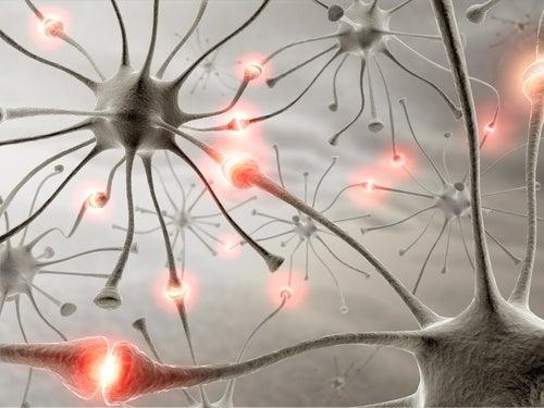 Remèdes naturels pour améliorer votre mémoire