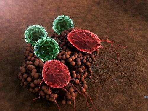 8 habitudes qui détruisent le système immunitaire