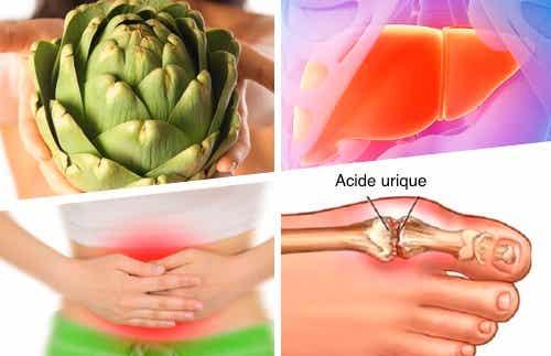 Les grands usages médicinaux de l'artichaut