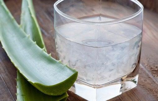 L'Aloe vera aide à purifier le sang