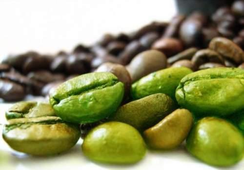 Le café vert contre les graisses.