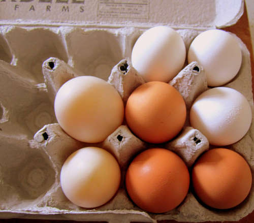 d'œufs