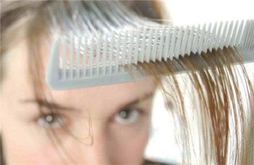 Les masques pour les bouts des cheveu avec lhuile jojoba