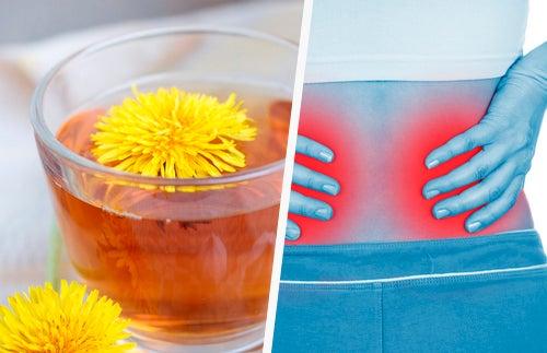 5 méthodes pour nettoyer vos reins facilement