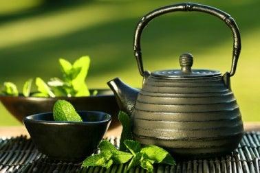 Les thés verts.