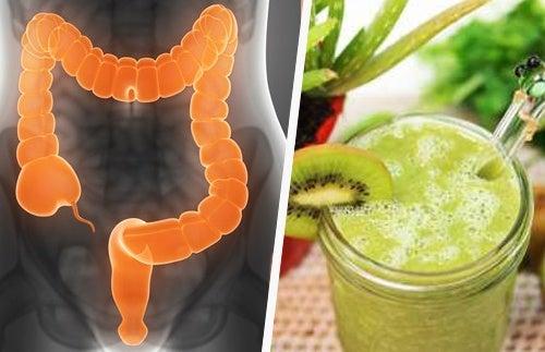 3 smoothies curatifs contre le syndrome de l'intestin irritable