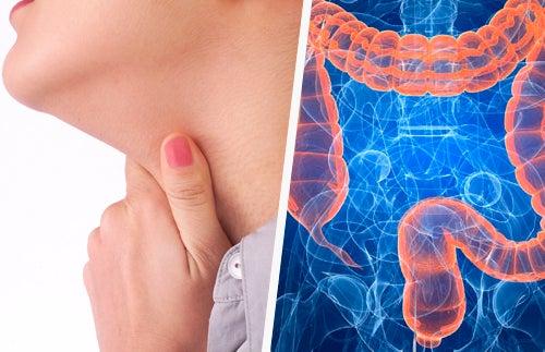 Les liens entre les maladies de la gorge et les intestins