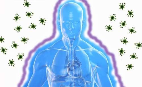 Système-immunitaire-2-500x306