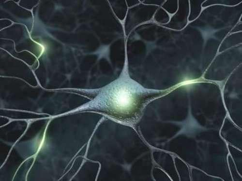 10 stratégies simples pour améliorer votre mémoire