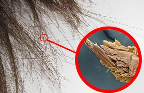 Réparer les pointes fourchues naturellement