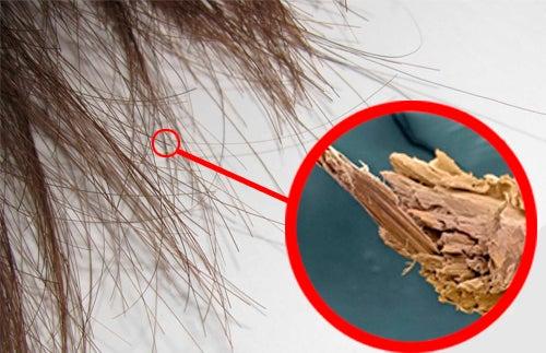 Comment réparer naturellement les pointes fourchues
