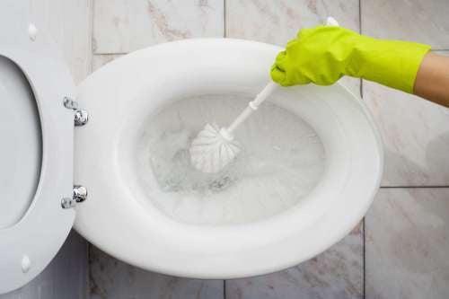 Découvrez comment nettoyer la salle de bain de manière écologique