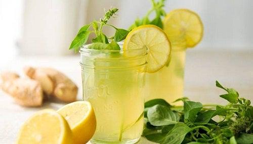 Gingembre, menthe et citron dans un verre
