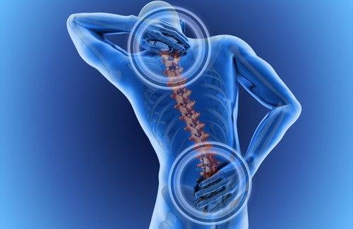 Quelles sont les causes des maux de dos ?