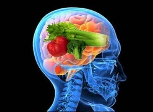 """Découvrez les bienfaits du """"régime du cerveau"""""""