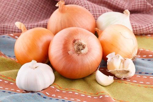 Comment faire pousser des oignons à la maison