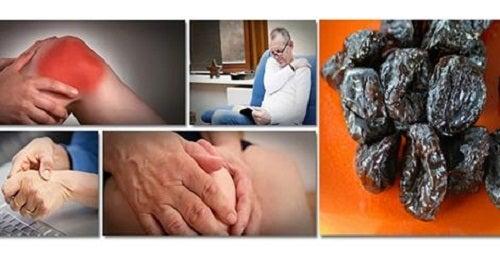 Des pruneaux contre la perte de masse osseuse