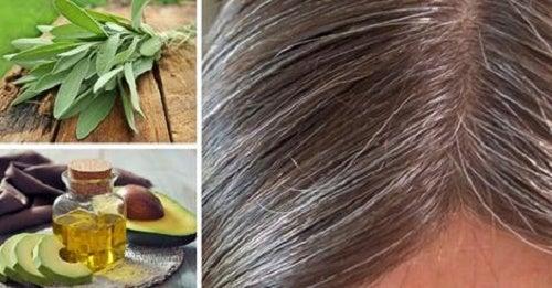 Découvrez les causes des cheveux blancs et combattez-les grâce à des remèdes naturels