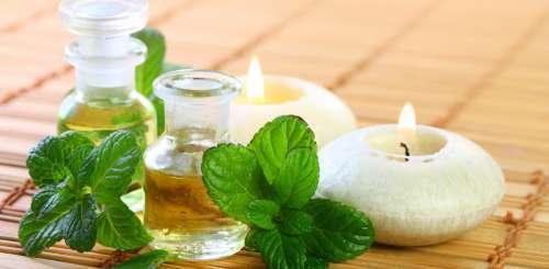 Comment faire de l'huile de menthe ?
