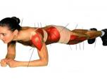 Exercice de Plank