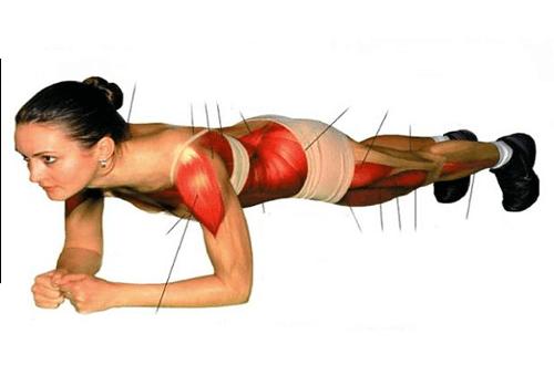 L'exercice de «Plank» muscle vos abdos et tout votre corps