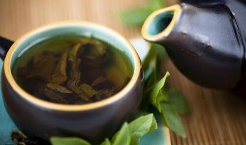 Quel est le meilleur moment de la journée pour boire du thé vert ?